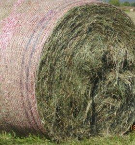 луговое сено в рулонах