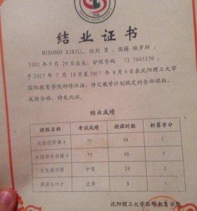 Репититор по Китайскому Языку