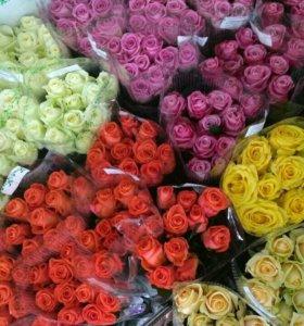 Розы из теплицы