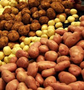 Продам недорого хороший, деревенский картофель.
