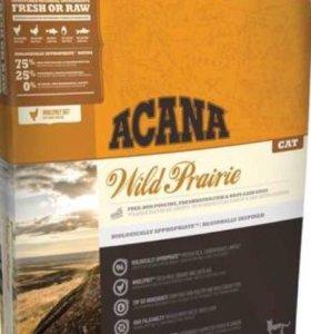 Acana wild prairie для кошек