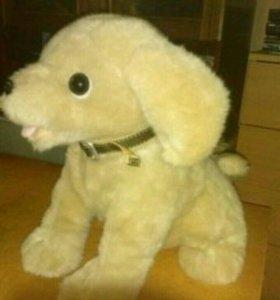 Механическая игрушка щенок Woofi.