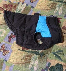 Курточка для мелких собак