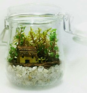Флорариум в подарок, мох, цветы