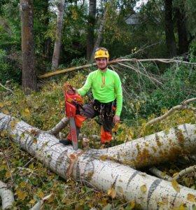 Спил деревьев в труднодоступных местах