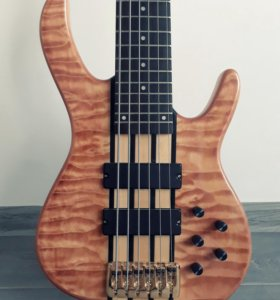 Ken Smith 6 strings Bass