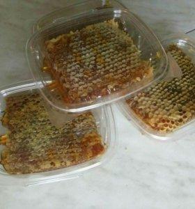 Мед натуральный в сотах. Гречка