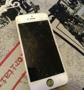 Дисплей для iphone 5s