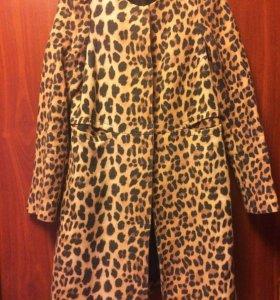 Пальто и снуд Zara