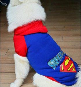 Одежда для собак /кошек
