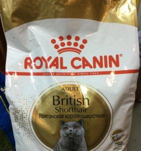 Royal Canin British Shorthair Adult 34, 10кг мешок