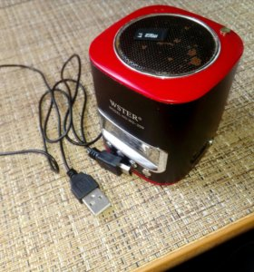 Колонка, зарядный провод, micro SD 2GB