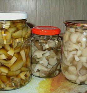 Грибы маринованные, грибы соленые