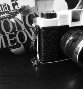 Камера Diana F+ Hong Meow