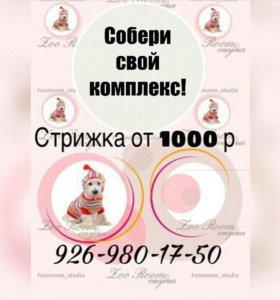 Стрижка собак и кошек в г.Видное