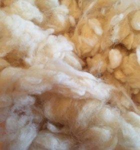 Шерсть овечья мытая