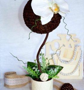 Топиарий с орхидеей