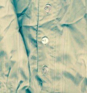 Блузка салатовый цвет