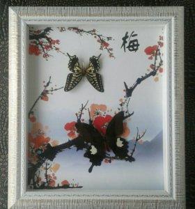 Панно Бабочки
