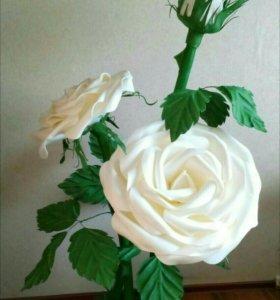 Большие Ростовые цветы розы
