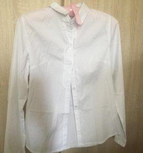 Рубашки Остин