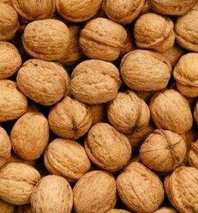 Орехи грецкие неочищенные