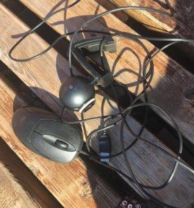 Мышь и вебкамеры