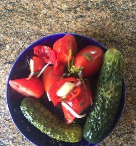Малосольные помидоры и огурцы(домашние)
