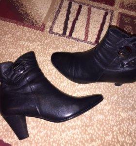 Кожаные ботинки женские демисезонные 38