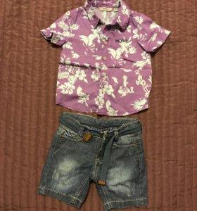 Рубашка Mexx+шорты Gulliver 12-18мес