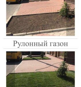 Растения от А до Я‼️‼️‼️