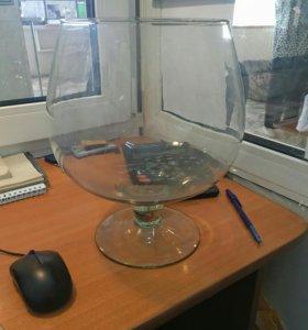 Аквариум-рюмка-ваза