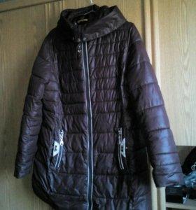 Куртки осень и зима