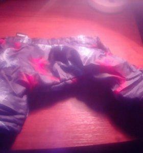 Зимний костюм для мелких пород собак