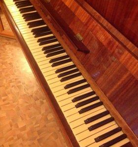 """Фортепиано """"берёзка"""""""
