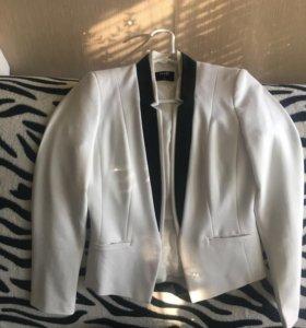 Пиджак или костюм