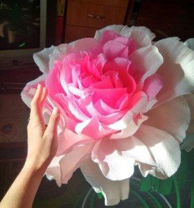 Изготовление для фотосессии большие цветы.