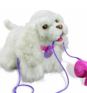 Интерактивный щенок Go Go