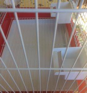 Большая Клетка для средних птиц
