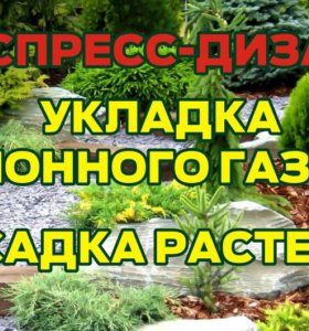 Ландшафтный дизайн Экспресс дизайн