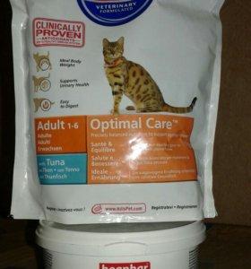 Корм для котят и кошек