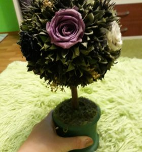 Цветок (розы) Rosa belle топиарий