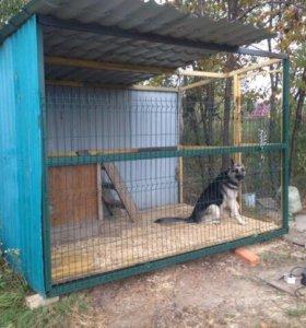 Вольер для крупной собаки