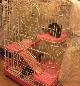Клетка для кроликов и шиншилл