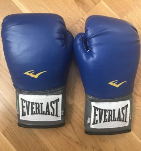 Перчатки тренировочные Everlast PU Pro Style 10 oz