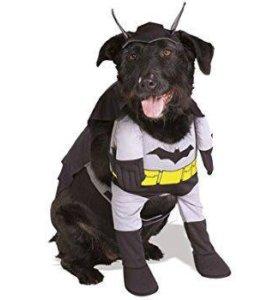 Костюм Бэтмэна для собаки на Хэллоуин