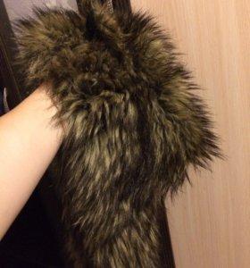 Волко-шапка