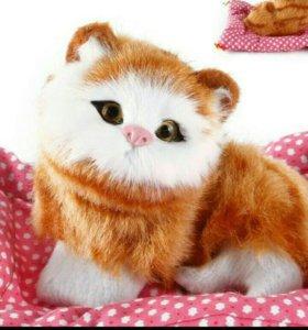 Милейший пушистый котенок!😽🤗💖