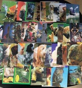Календарики и открытки с 70-х по 90-е годы.