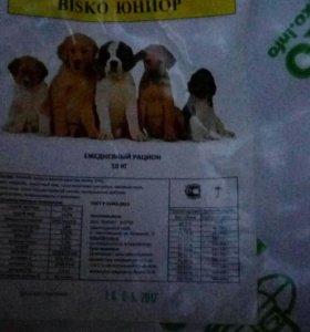 Корм для щенков крупных и средних пород 10 кг